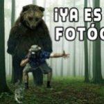 """Colección de MEMES  """"Ya es Viernes Fotógrafos"""""""