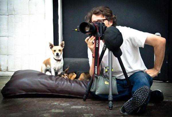Las 20 áreas en las que un fotógrafo se puede especializar.
