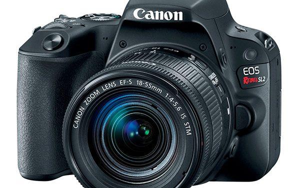 Funciones de la cámara Canon EOS Rebel SL2 que debes aprender